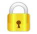 0_1498627796916_Gold Lock.JPG