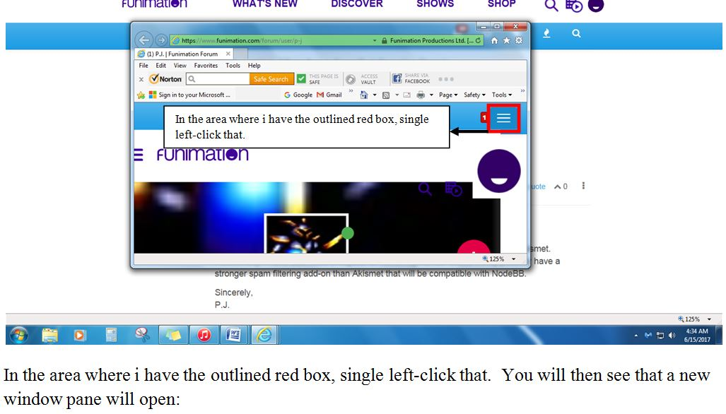 0_1497520349363_Online Status Screenshot 2.JPG